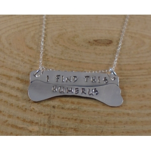 Sterling Silver Stamped 'I Find This Humerus' Necklace